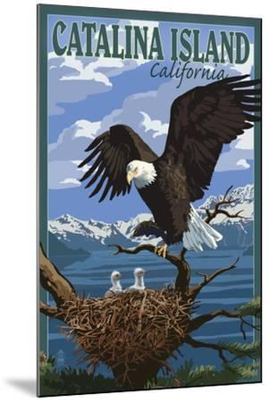 Catalina Island, California - Bald Eagle and Chicks-Lantern Press-Mounted Art Print