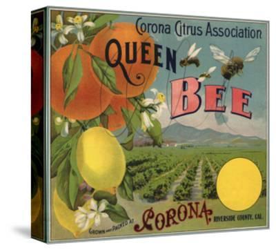 Queen Bee Brand - Corona, California - Citrus Crate Label-Lantern Press-Stretched Canvas Print