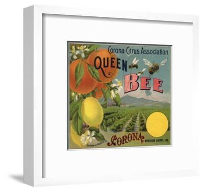 Queen Bee Brand - Corona, California - Citrus Crate Label-Lantern Press-Framed Premium Giclee Print