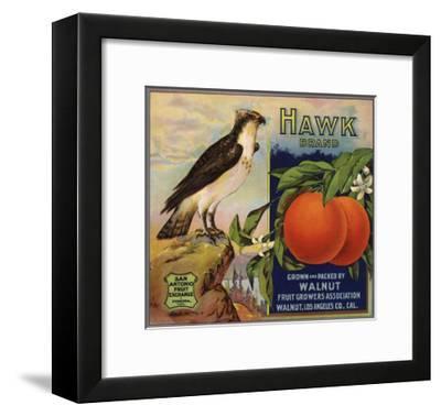 Hawk Brand - Walnut, California - Citrus Crate Label-Lantern Press-Framed Art Print
