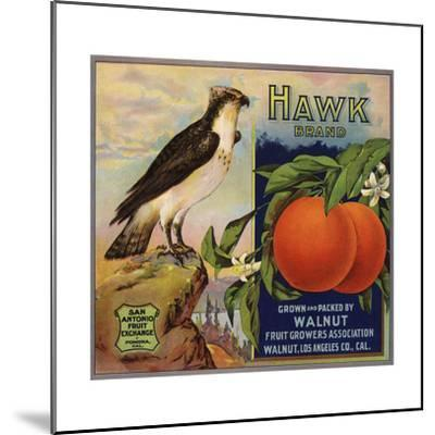 Hawk Brand - Walnut, California - Citrus Crate Label-Lantern Press-Mounted Art Print
