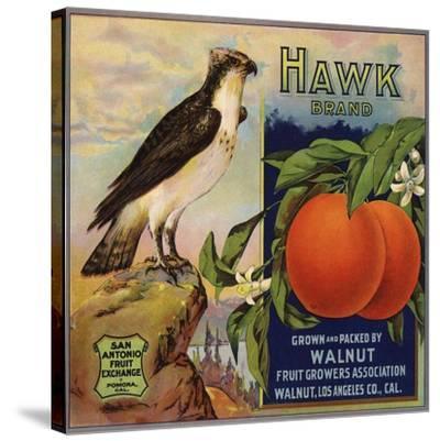 Hawk Brand - Walnut, California - Citrus Crate Label-Lantern Press-Stretched Canvas Print