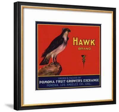 Hawk Brand - Pomona, California - Citrus Crate Label-Lantern Press-Framed Art Print