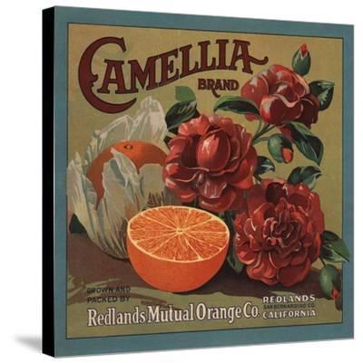 Camelia Brand - Redlands, California - Citrus Crate Label-Lantern Press-Stretched Canvas Print