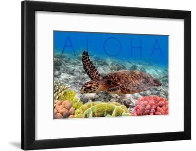 Sea Turtle and Coral - Aloha-Lantern Press-Framed Art Print