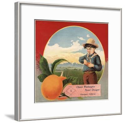 Boy in Orchard - Claremont, California - Citrus Crate Label-Lantern Press-Framed Art Print