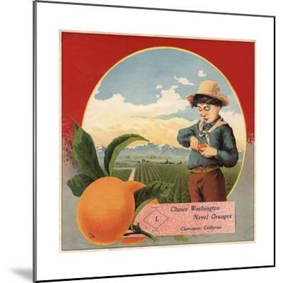 Boy in Orchard - Claremont, California - Citrus Crate Label-Lantern Press-Mounted Art Print