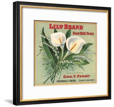 Lily Brand - Porterville, California - Citrus Crate Label-Lantern Press-Framed Art Print