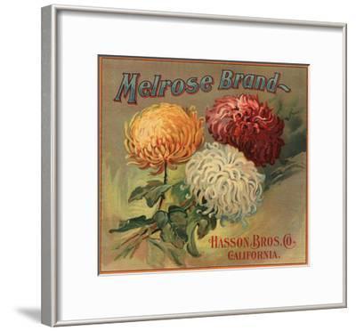 Melrose Brand - California - Citrus Crate Label-Lantern Press-Framed Art Print