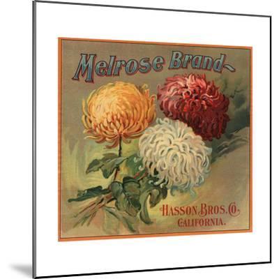 Melrose Brand - California - Citrus Crate Label-Lantern Press-Mounted Art Print