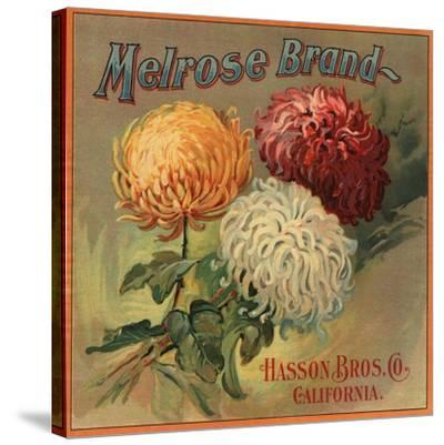 Melrose Brand - California - Citrus Crate Label-Lantern Press-Stretched Canvas Print