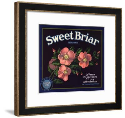 Sweet Briar Brand - La Verne, California - Citrus Crate Label-Lantern Press-Framed Art Print