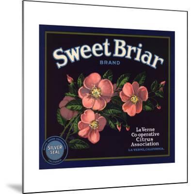 Sweet Briar Brand - La Verne, California - Citrus Crate Label-Lantern Press-Mounted Art Print