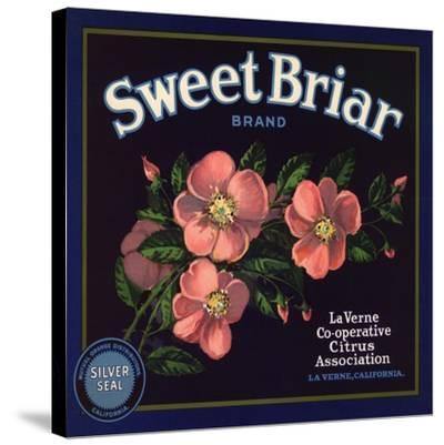 Sweet Briar Brand - La Verne, California - Citrus Crate Label-Lantern Press-Stretched Canvas Print
