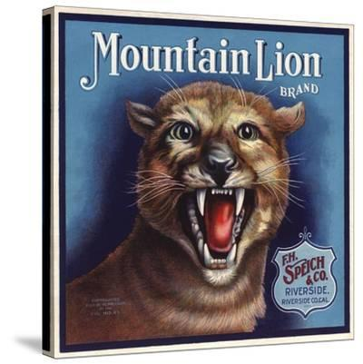 Mountain Lion Brand - Riverside, California - Citrus Crate Label-Lantern Press-Stretched Canvas Print