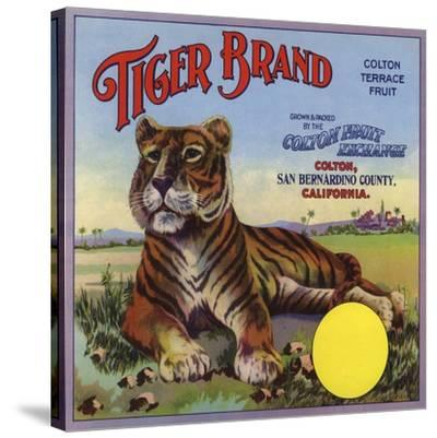 Tiger Brand - Colton, California - Citrus Crate Label-Lantern Press-Stretched Canvas Print