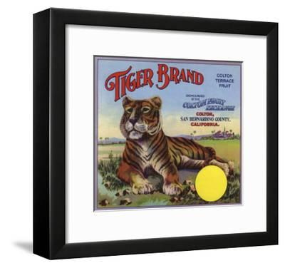 Tiger Brand - Colton, California - Citrus Crate Label-Lantern Press-Framed Art Print