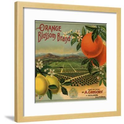 Orange Blossom Brand - Redlands, California - Citrus Crate Label-Lantern Press-Framed Premium Giclee Print