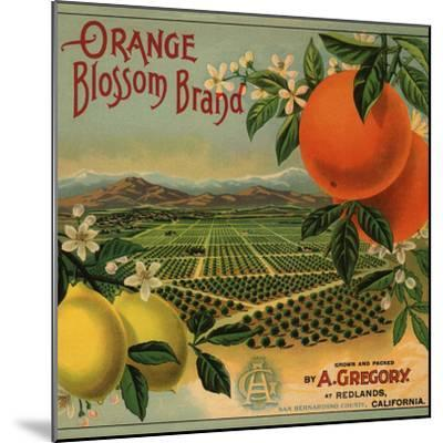 Orange Blossom Brand - Redlands, California - Citrus Crate Label-Lantern Press-Mounted Premium Giclee Print