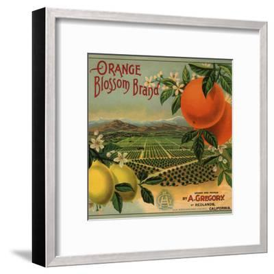 Orange Blossom Brand - Redlands, California - Citrus Crate Label-Lantern Press-Framed Art Print