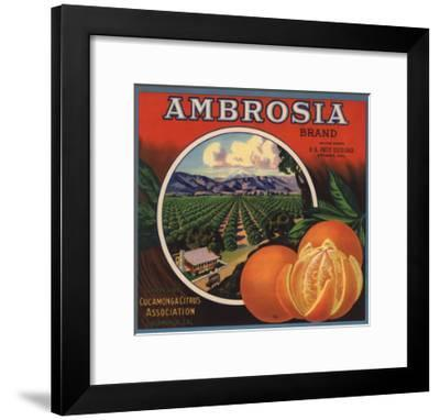 Ambrosia Brand - Upland, California - Citrus Crate Label-Lantern Press-Framed Art Print