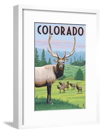 Colorado - Elk Herd-Lantern Press-Framed Art Print