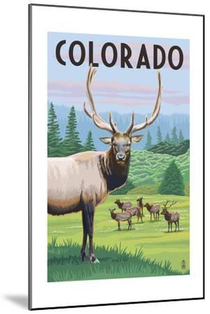Colorado - Elk Herd-Lantern Press-Mounted Art Print