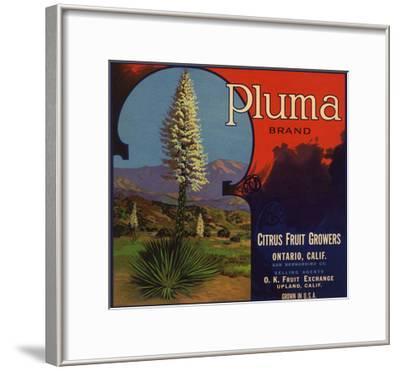 Pluma Brand - Upland, California - Citrus Crate Label-Lantern Press-Framed Art Print