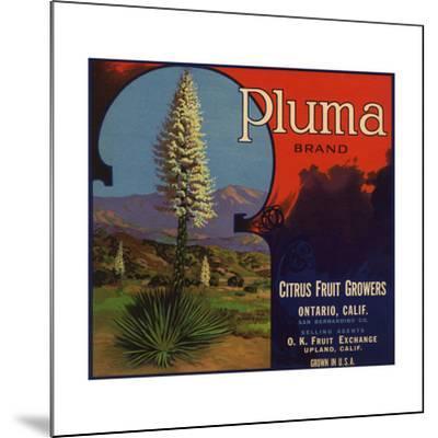 Pluma Brand - Upland, California - Citrus Crate Label-Lantern Press-Mounted Art Print