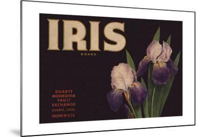 Iris Brand - Duarte, California - Citrus Crate Label-Lantern Press-Mounted Art Print