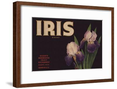 Iris Brand - Duarte, California - Citrus Crate Label-Lantern Press-Framed Art Print