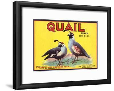 Quail Brand - Upland, California - Citrus Crate Label-Lantern Press-Framed Art Print