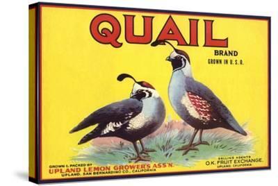Quail Brand - Upland, California - Citrus Crate Label-Lantern Press-Stretched Canvas Print