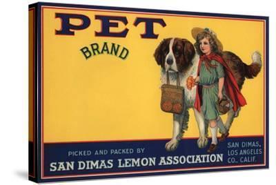 Pet Brand - San Dimas, California - Citrus Crate Label-Lantern Press-Stretched Canvas Print