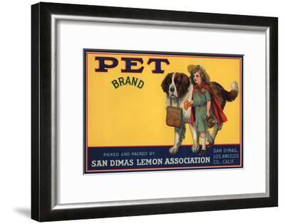 Pet Brand - San Dimas, California - Citrus Crate Label-Lantern Press-Framed Art Print