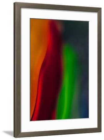 Diva-Ursula Abresch-Framed Photographic Print