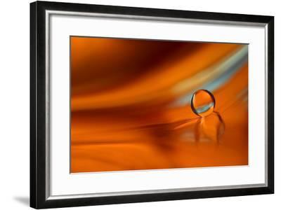 Touch of Blue-Heidi Westum-Framed Photographic Print