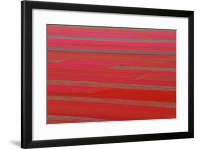 Red Land-Marco Carmassi-Framed Photographic Print