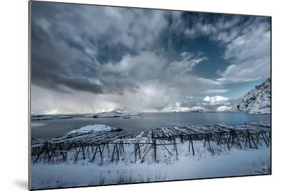 Cloudy Day in Norway-Philippe Sainte-Laudy-Mounted Photographic Print