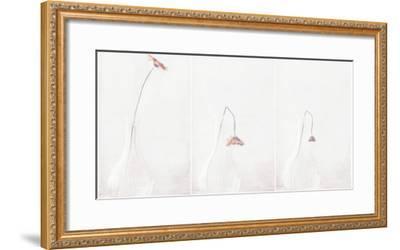 Ars Longa, Vita Brevis...-Delphine Devos-Framed Photographic Print