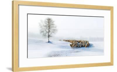 In Snow-Hua Zhu-Framed Photographic Print