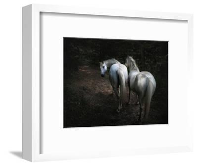 Come-Holger Droste-Framed Photographic Print