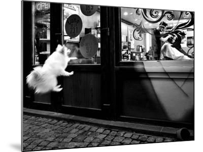 Last Customer-Mirela Momanu-Mounted Photographic Print