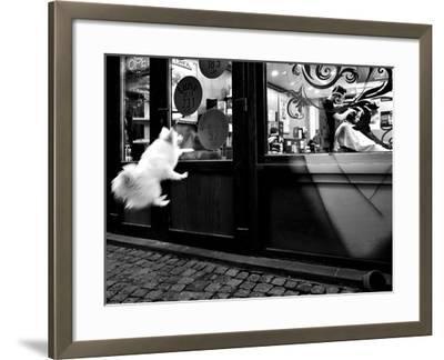 Last Customer-Mirela Momanu-Framed Photographic Print
