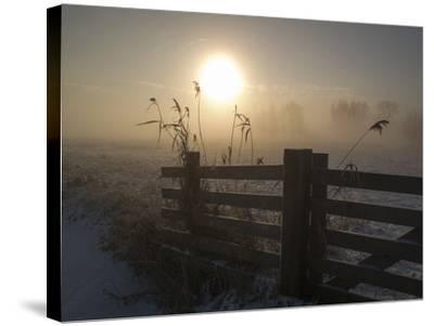 Winter Mood-Alida Van Zaane-Stretched Canvas Print