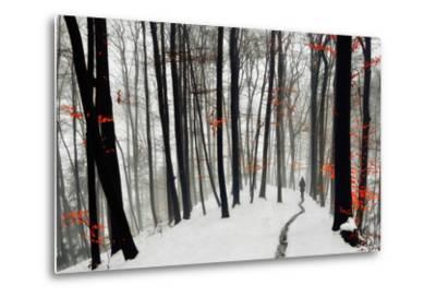 Through Autumn and Winter- Samanta-Metal Print