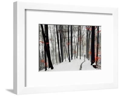 Through Autumn and Winter- Samanta-Framed Photographic Print