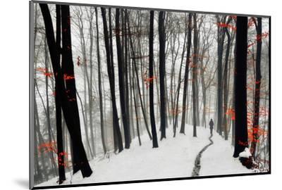 Through Autumn and Winter- Samanta-Mounted Photographic Print
