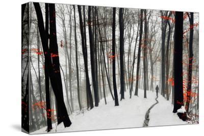 Through Autumn and Winter- Samanta-Stretched Canvas Print