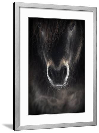 Ulysses-P R I-Framed Photographic Print